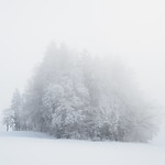 So, 22.01.17 - 15:43 - WinterNebelWald