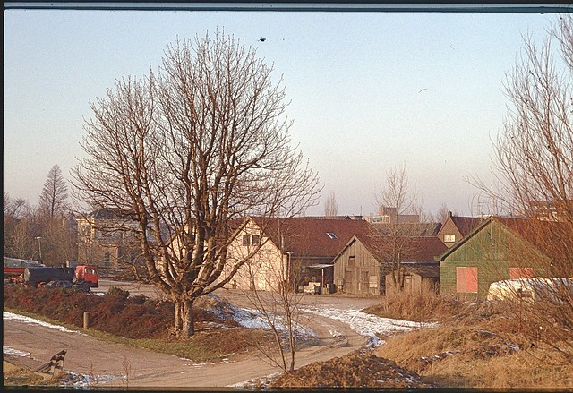 Papendrecht0012