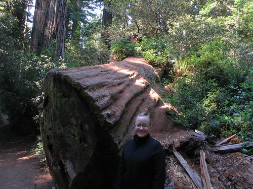 Alicia, Lady Bird Johnson Grove, Redwoods National Park, California | by Ken Lund