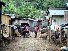 Angolares Market