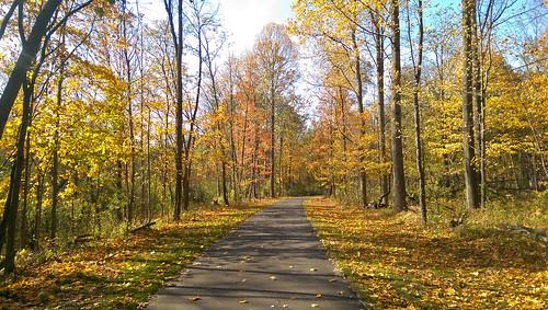 park autumn trees fall leaves bikepath october path michigan fallcolors foliage trail pathway biketrail trailway shelbytownship riverbendspark