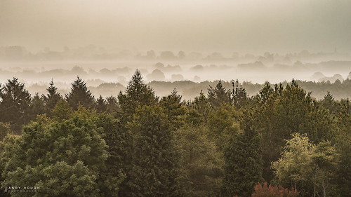 morning trees mist landscape countryside sony treelines a99 sonyalpha andyhough slta99v andyhoughphotography tamronsp70200di