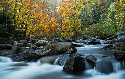 fall colors forest northcarolina waterfalls blueridgeparkway