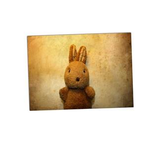 Bunny A13