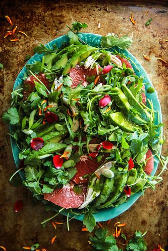 Arugula, Chicken, Grapefruit and Avocado Salad with Cilantro Vinaigrette from HeatherChristo.com | by Heather Christo