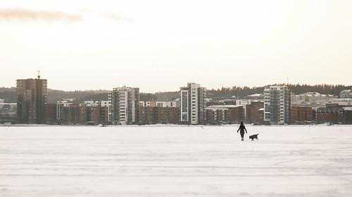 nikon d600 handheld sigma 70200mm f28 girl dog ice lake city skyline jyväskylä jyvaskyla suomi finland winter view landscape sunset sky snow cold frozen
