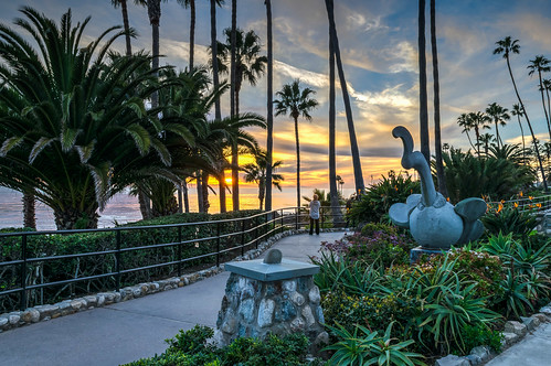 california catalinaisland hdr heislerpark lagunabeach nikon nikond5300 pacificocean people santacatalinaisland beach birdofparadise clouds evening fence flowers garden geotagged ocean palmtree palmtrees park path reflection reflections sculpture shoreline sky sunset tree trees water unitedstates