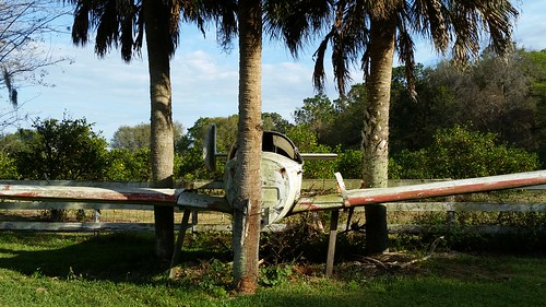 aviation airplanes airports jet planes aircrafts landscape florida lovefl frostproof avonpark abandoned trees palmtrees fence grass transport transportation shade lakeclinch silverlake reedylake vehicles retired arrivals finaldestination wings 3 three triangulaion similar