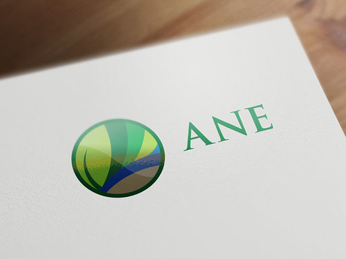 LOGO ANE | by orderdesign