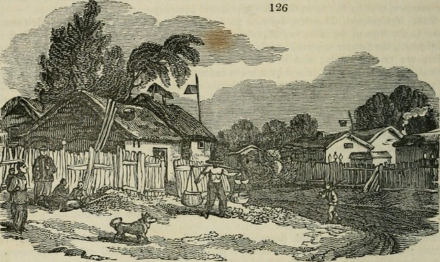 "Image from page 199 of ""An encyclopædia of agriculture [electronic resource] : comprising the theory and practice of the valuation, transfer, laying out, improvement, and management of landed property, and the cultivation and economy of the animal and veg"