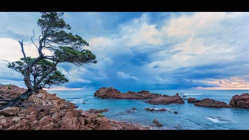 sardegna italien italy panorama seascape tree sunrise landscape rocks meer italia sardinia landschaft sonnenaufgang baum sardinien mediterraneansea badweather felsen a77 mittelmeer schlechteswetter neutraldensityfilter graufilter marinadigairo alpha77 sonya77
