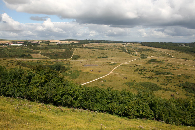 View inland over the Lulworth Ranges from Bindon Hill