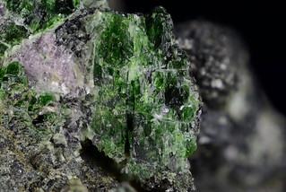 Ehimeite_2 | by dnh_macro