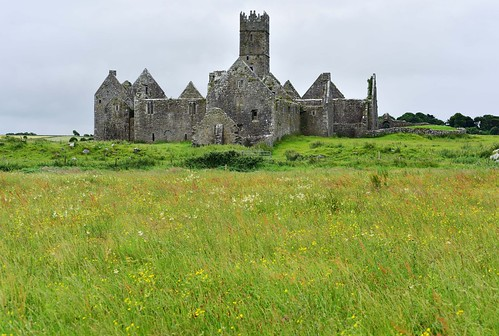 13511753ad architecture church franciscanmonastery ireland landscape latemedieval rosserrillyfriary sacked1656