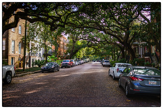 Savannah-205-Edit | by ramboorider1