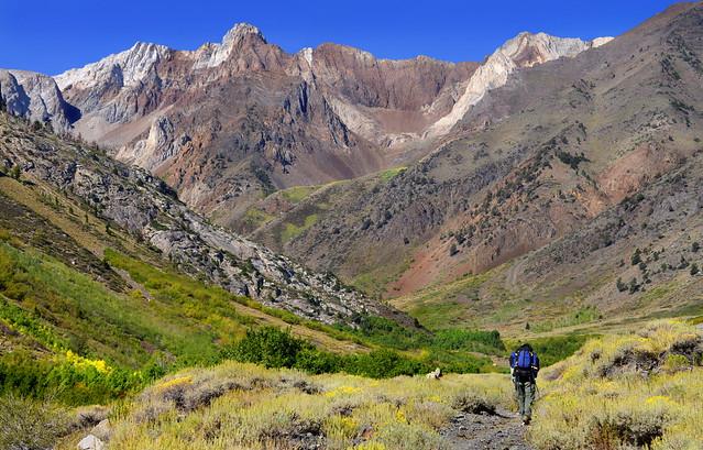 Backpacker on McGree Creek Trail, Sierra Nevada, California