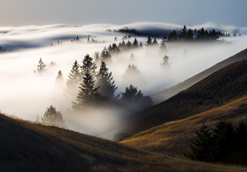 f o g a h o l | marin county, california