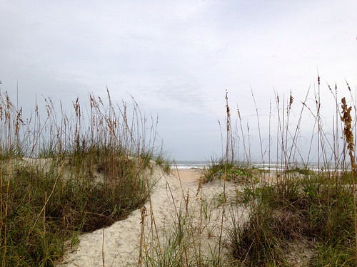 Sand dunes with sea oats and sea grass with the beach and ocean beyond