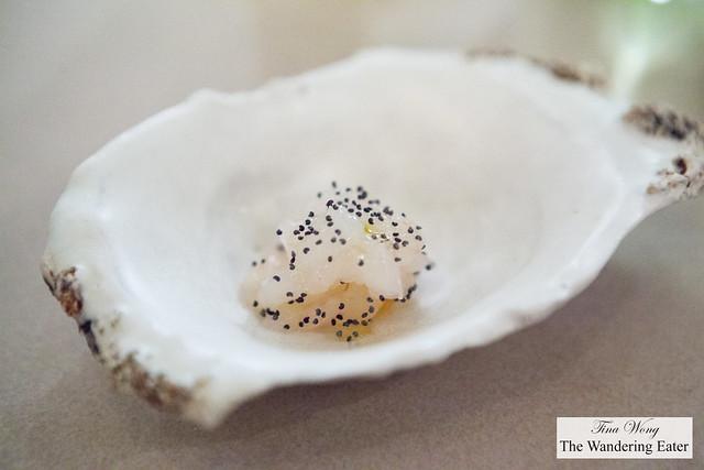 Glass shrimp, poppy seeds