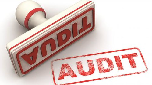 Business Audit by Tanisha Mills CPA Professionals | by Gino Leo