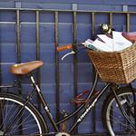 Basket of Book Festival brochures | Bicycle basket bursting with Book Festival brochures © Helen Jones