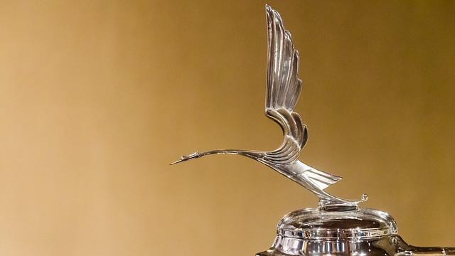 Caddy Heron