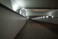 Rotterdam CS fietstunnel