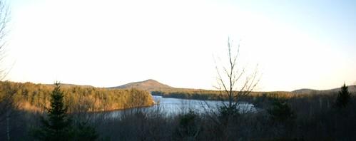 Pitcher Pond