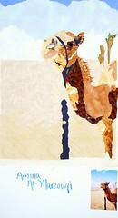 Amina's Camel