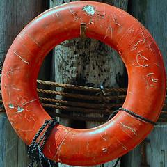 squared circle - orange life saver