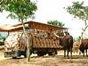 Animal World Safari, A Famosa Resort, Melaka