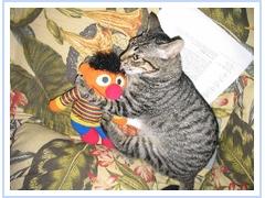 Ernie+Ernie