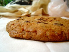 chocolate chip cookie just SITTING there