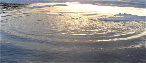 Water-ring