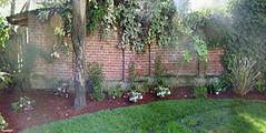 yard-brick-wall