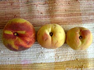 L-Peach M-Peach S-Peaches