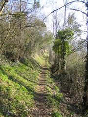 Dordogne Pathway