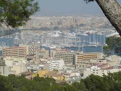 Vista sobre Palma