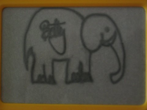 Un elefant asiàtic