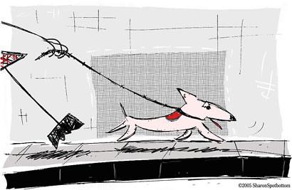 Sharon-dog-walker-