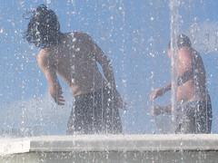 Fountain, Kelburn Park, Wellington