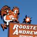 2005Mar-AustinTypeTour-030 - Rooster Andrews