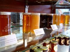 lots of honey