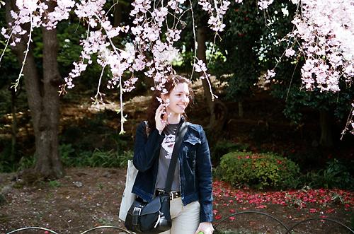 Under a cherry tree
