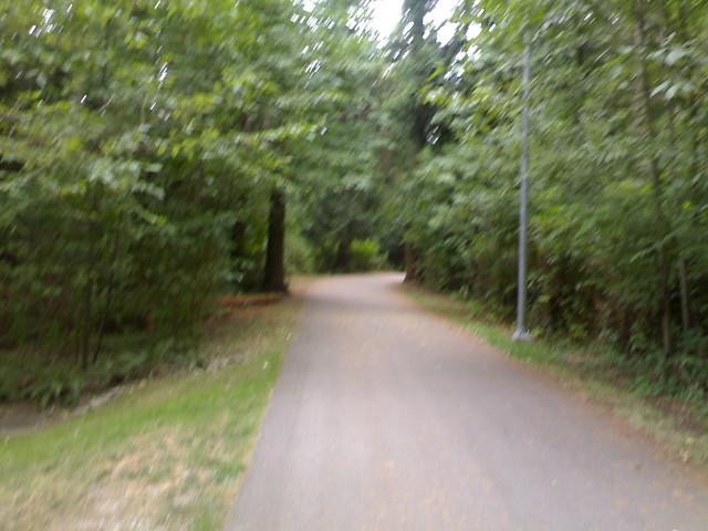 Byrne Creek Ravine Park Paved Walkway