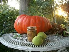 pumpkin and quinces on the table | by hardworkinghippy : La Ferme de Sourrou