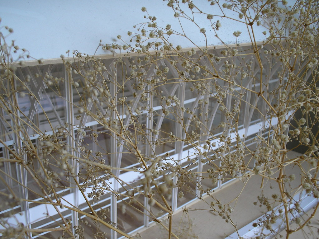architectural model 6 | These baby's breath trees delight me… | Flickr