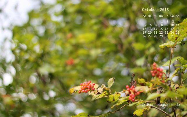 beeren_oktober_kalender_die-photographin