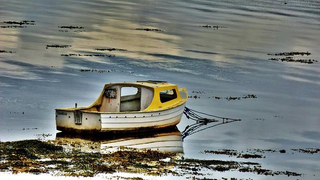 The Boat Cranela