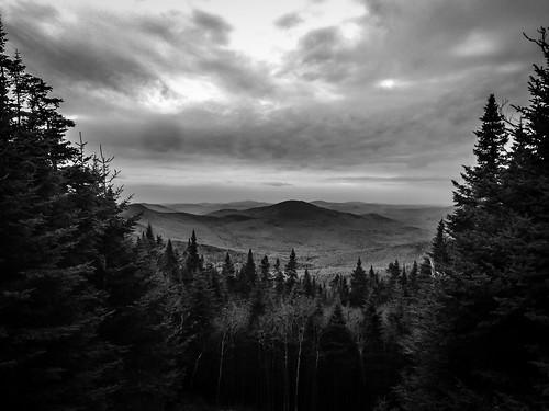 trees blackandwhite bw mountains monochrome us unitedstates newhampshire whitemountains mtmoosilauke benton iphoneography iphone6